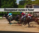 Лошадиные скачки в Ухане
