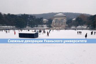 снег в ухане китай ухньский университет