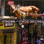 китайский голливуд хэндянь шанхай кино
