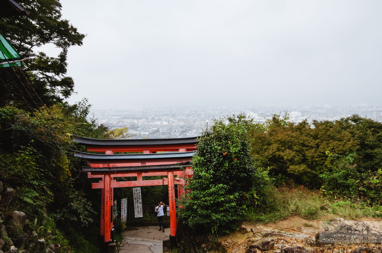 вид с горы фусими инари на киото