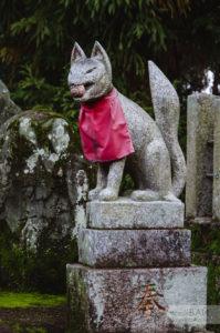 лисы в храме инари киото kyoto kitsune fusimi inari