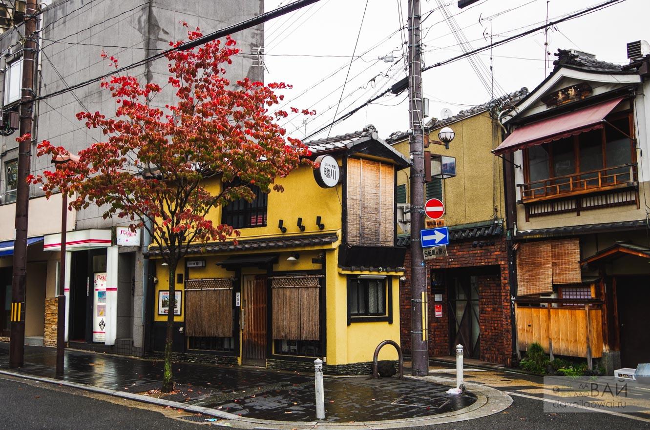 улица киото понточо