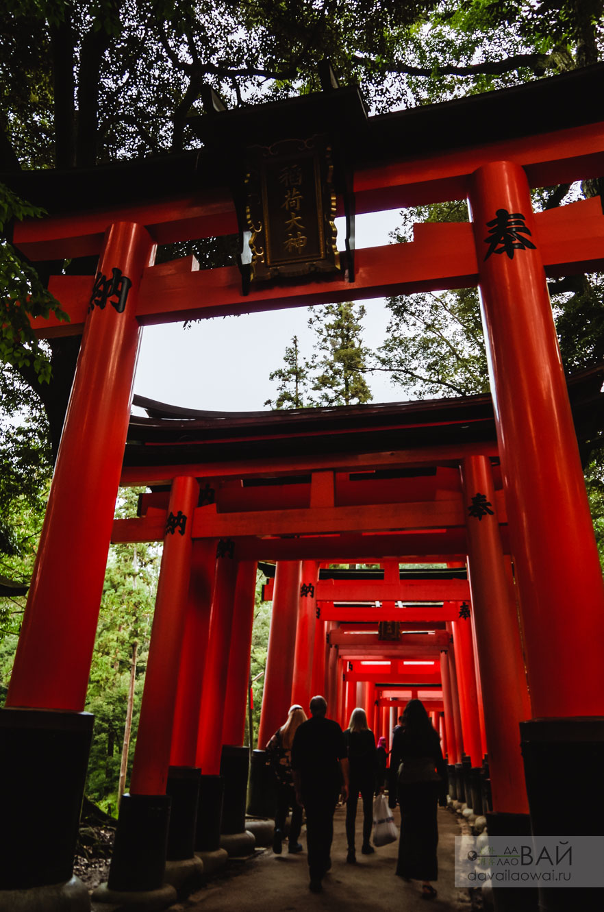 когда идти в храм фусими в киото