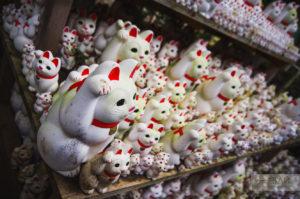 храм с кошками токио готокудзи gotokuji neko